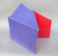 Red/Blue Form side 1