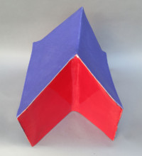 Red/Blue Form front